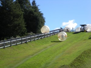 Zorbing, Clocks and Kony 2012 (Muddy Monday)