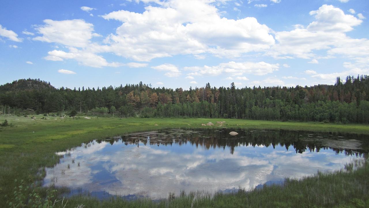 Molly Lake