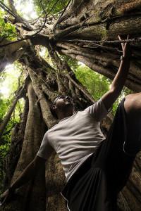 Treebeard, Lost and Found Hostel